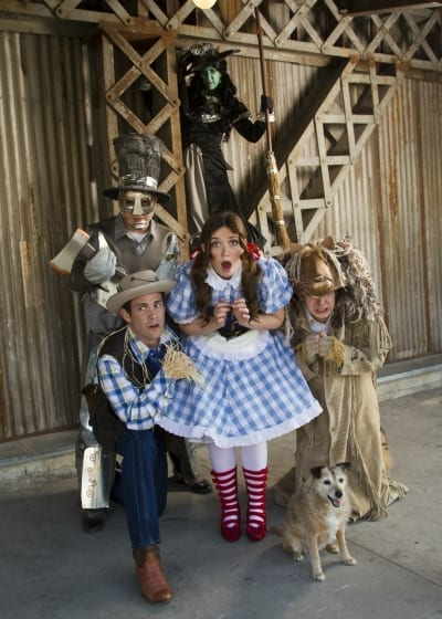 A different look at THE WIZARD OF OZ