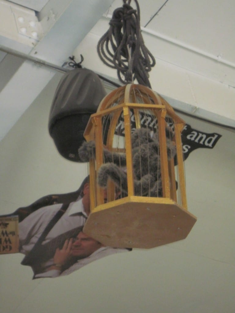 Space constraints sometimes require items to be stored by hanging from the ceilings. Here a caged monkey from a past season is stored high above the prop shop employees' heads.