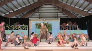 Peter Pan4 - Herriman Arts Council