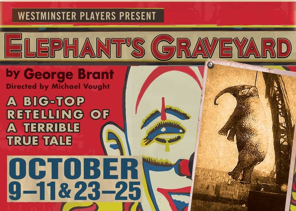 A powerful ELEPHANT'S GRAVEYARD at Westminster College