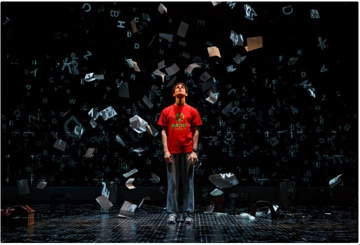THE CURIOUS INCIDENT: a window into another human world