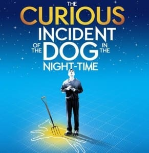 Curious Incident poster - Broadway