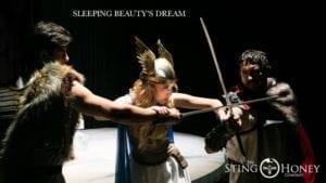 Sleeping Beauty's Dream - Sting and Honey Company