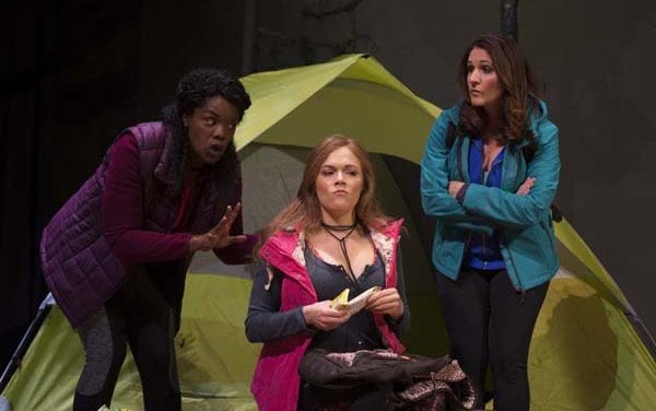 WOMEN IN JEOPARDY! is a pleasant comedy, but only half a play
