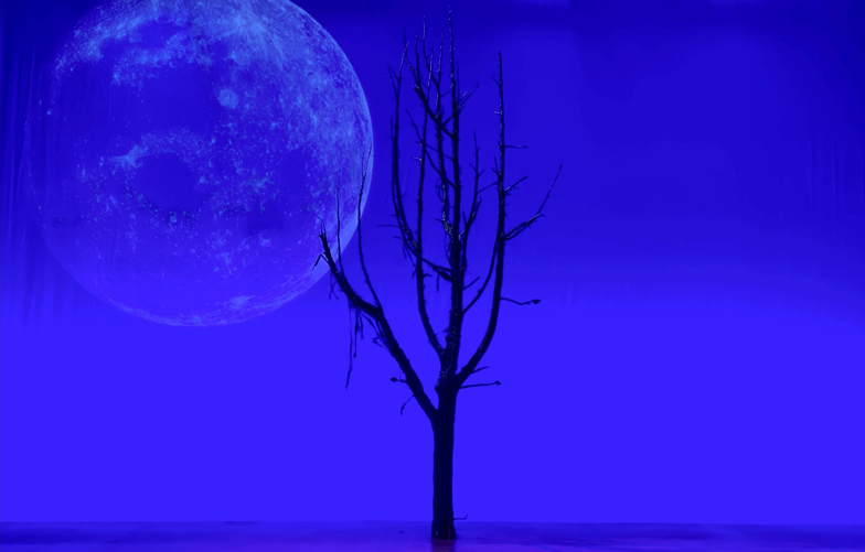 Discover the meaning(lessness) of life while WAITING FOR GODOT